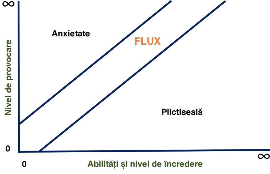 teoria Flow în training